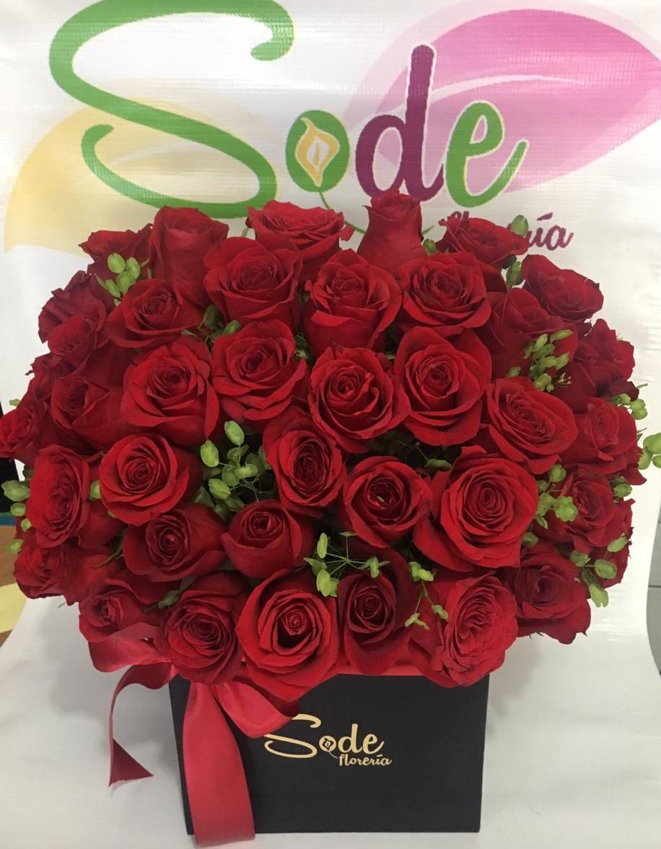 Caja  grande  con 50 Rosas