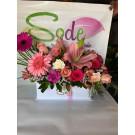 Caja con gerberas, lilies, rosas y clavel