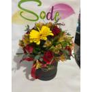 Caja circular chica con gerbera amarilla, alstroemeria y rosas rojas
